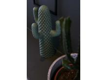 ByOn SS17 kaktus
