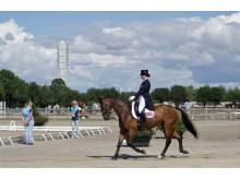 Internationell ungdomsdressyr nytt för Malmö City Horse Show