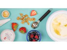 Frozen Yoghurt - så här gör du!