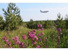 Swedavias flygpassagerarstatistik för juli 2018 illustreras med bild av flygplan vid Stockholm Arlanda Airport. Fotograf Alexandra Maritz.