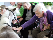 85-årige Ida Sørensen aer Ollivander