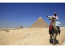 Kamelryttare i Kairo