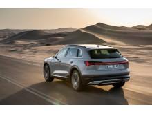 Audi e-tron (siambeige) bagfra