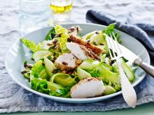 Stekt kyckling med frön, kärnor avokado & krispig sallad