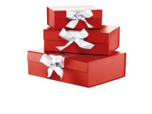 Christmas Surprise Gift Box