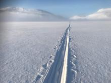 Spor etter pulk og ski