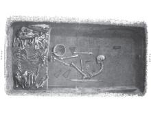 Birkakrigaren var kvinna