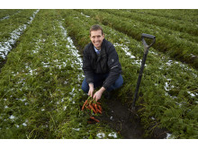 Niels Ege Nielsen har leveret kvalitetsgulerødder helt tilbage fra, da Lidl begyndte i Danmark.