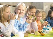 Fire av fem skoler leverer melkekartonger til gjenvinning