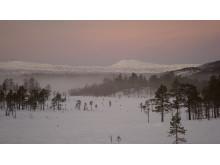 Håfjelltuva og Linken, sett fra Melkedalen i Ballangen