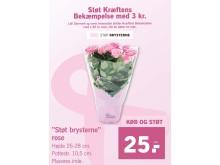"""Når du køber """"Støt Brysterne""""-roser i Lidl, støtter du automatisk Kræftens Bekæmpelse med 3 kr."""