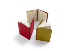Papper och stygn - Anteckningsbok i tvåarkshäftning