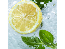 Les Plaisirs Nature Energizing Lemon Basil