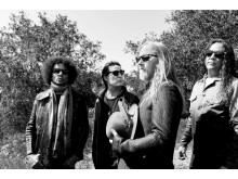 Alice in Chains til NorthSide 2019