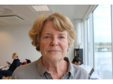 Lise Bergh, ordförande