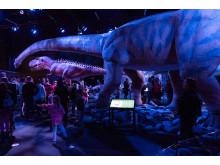 Jättimäiset dinosaurukset