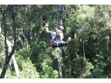 Ziplining mellan träden