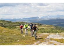 MTB cykling Funäsdalsberget