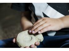 barn känner på ammonit närbild liggande