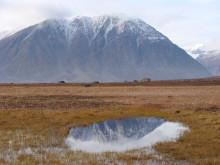 Permafrost nordöstra Grönland
