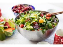 Det er bare å la seg friste og sette salater på menyen i sommer.
