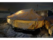 Snö i flyktinglägret Zaatari i Jordanien