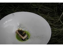 Food shot from Oaxen Krog