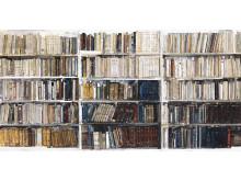 Lars Lerin / Bibliotek/Library, 2009
