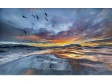 Last sunseth - Audun Rikardsen