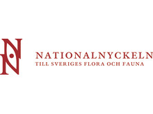 Nationalnyckeln NN logo 2rad_v-CMYK_rod