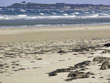 Moray Stormy Beach