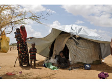 Kenya - bild 1