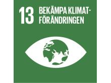 13 bekämpa klimatförändringen