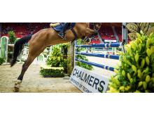 Kraften i hästen upphopp och landning mäts under årets Gothenburg Horse Show.