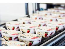 AINO jäätelöitä tuotetaan Nestlén tehtaalla Turengissa