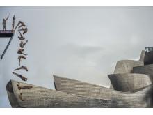 SWPA2019_Pedro Luis Ajuriaguerra Saiz_Spain_Open_Motion