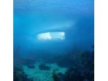 Durch ein großes Panoramafenster können Gäste das Meerestreiben beobachten.