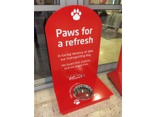 Paws for a Refresh - Have a drink on Jake
