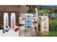Exempel på hållbara förpackningar