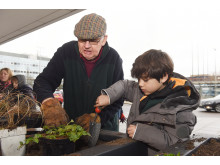 Milton Keynes Model Railway Society and local children fill planters at Milton Keynes station