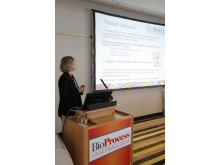 One of the many presentations at BPI 2013