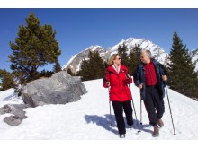 Ramblers Walking Holidays: WINTER WALKS IN KANDERSTEG
