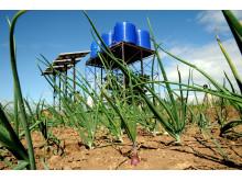 Solcelledreven vandpumpe Malawi