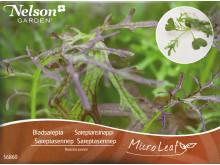 Micro Leaf är en serie fröpåsar med utvalda mikroblad samt ett specialgjort minidrivhus från Nelson Garden som gör det lätt…