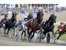 Hästnäringen i Sverige skapar 38 000 jobb