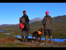 Möjlighet att få statliga jaktkortet på köpet