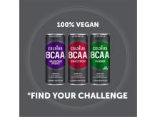 Celsius_BCAA_PACKS