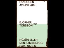 9788234002137 Torsson x 2 Framside R.jpg
