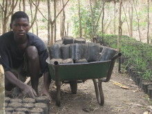 Ung anställd på en av plantskolorna i Sofala, Mocambique