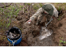 Permafrost in the Arctic soil